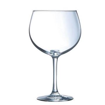 Picture of Juniper Gin Cocktail Glass 24oz x6